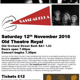Saturday 12th November 2016    In Concert:  Sassparella and Magnificent AK47s